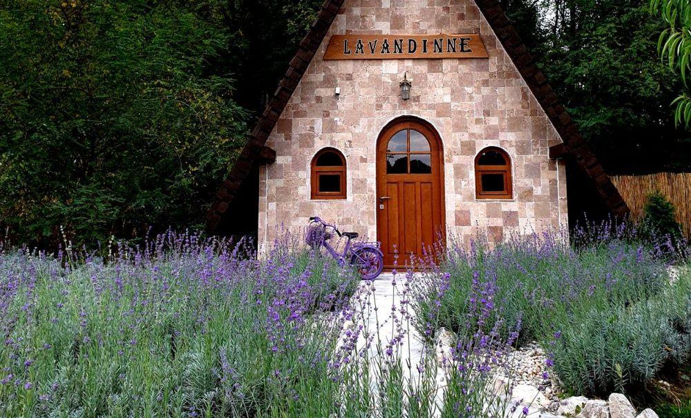 Tărâmul de poveste al lavandei din Gorj!   Un peisaj mirific care impresionează toţi vizitatorii
