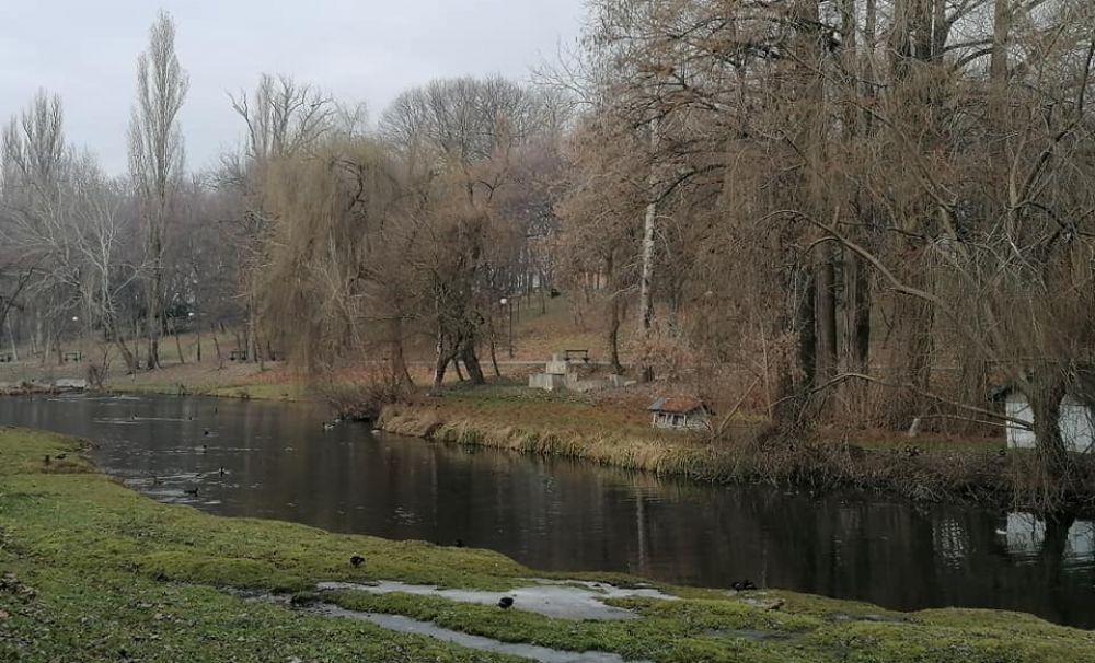 Grădina Botanică, Parcul Nicolae Romanescu și Parcul Hanul Doctorului vor fi închise temporar pentru dezinsecție terestră în data de 1 aprilie 2021